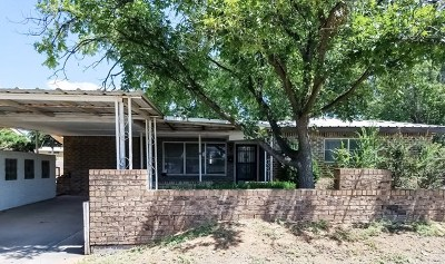 Andrews Single Family Home For Sale: 504 NW 5th St