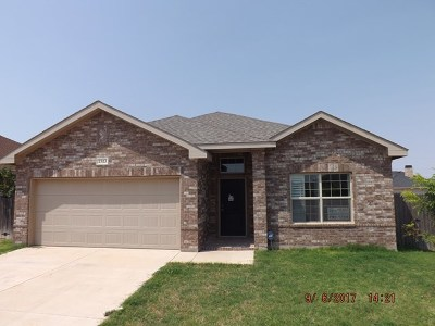 Odessa Single Family Home For Sale: 7313 Raphael