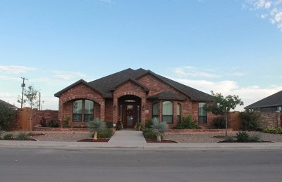 Odessa Single Family Home For Sale: 10 Durham