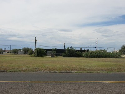 Odessa Residential Lots & Land For Sale: 903 N Tom Green Ave