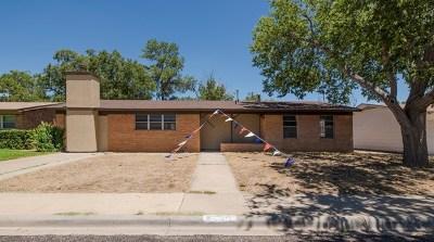Odessa Single Family Home For Sale: 5006 Kingston Ave