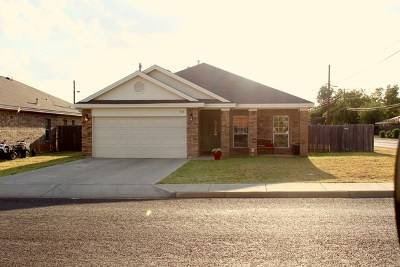 Andrews Single Family Home For Sale: 713 NW 8th St