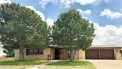 Odessa Single Family Home For Sale: 1506 Parker Dr