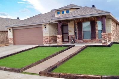 Odessa Single Family Home For Sale: 9703 Desert Ave.
