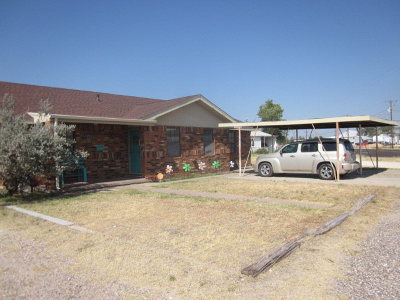 Monahans Single Family Home For Sale: 1009 N Main St