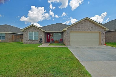 Odessa Single Family Home For Sale: 9102 Holiday Dr