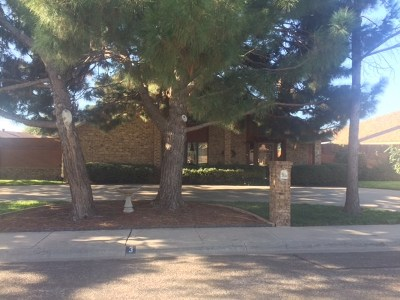 Odessa Single Family Home For Sale: 3 Placid Court