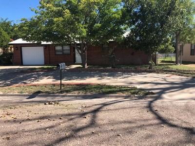 Seminole Single Family Home For Sale: 308 NE 2nd St