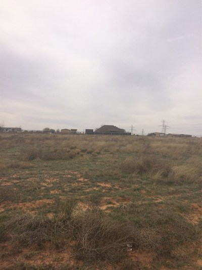 Residential Lots & Land For Sale: 14257 Saddlehorn