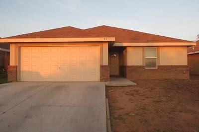 Odessa Single Family Home For Sale: 910 Coronado