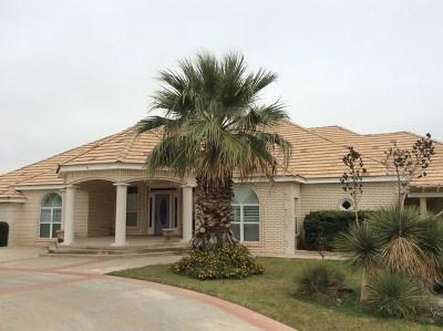 Odessa Single Family Home For Sale: 5600 Colorado Ave