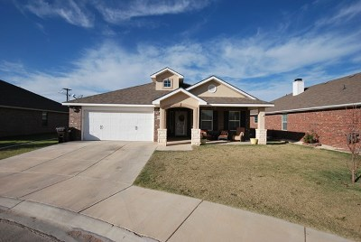 Midland Single Family Home For Sale: 6304 Colt Court