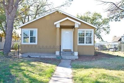 Odessa Single Family Home For Sale: 711 McKinney Ave