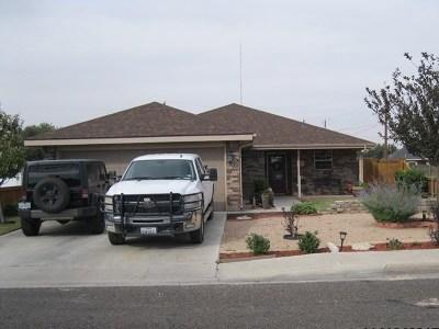 Odessa Single Family Home For Sale: 2008 Coahuila Rd