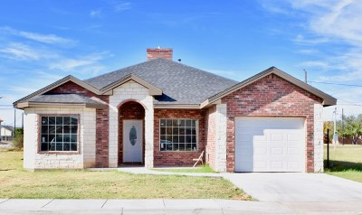 Odessa Single Family Home For Sale: 506 Bunche
