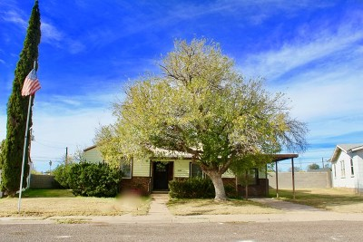 Odessa Single Family Home For Sale: 3207 Bellaire Dr