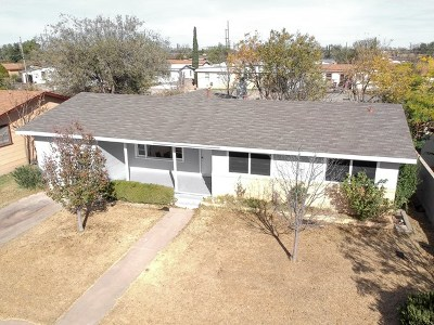 Odessa Single Family Home For Sale: 1713 Patton Dr