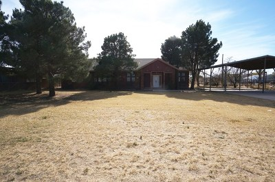 Odessa Single Family Home For Sale: 9955 W Riggs Dr