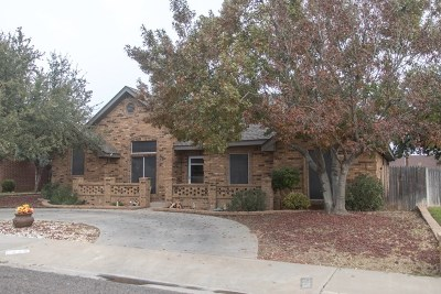 Odessa Single Family Home For Sale: 5128 Richardson Dr