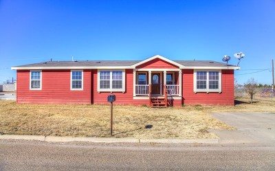 Odessa Single Family Home For Sale: 9736 W 3rd St