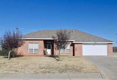 Midland Single Family Home For Sale: 3614 Springmont Dr