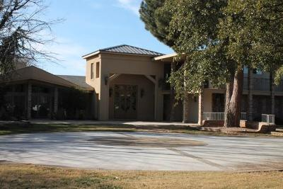 Odessa Single Family Home For Sale: 2709 Palo Verde Dr