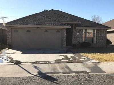 Andrews Single Family Home For Sale: 916-B Bronstad