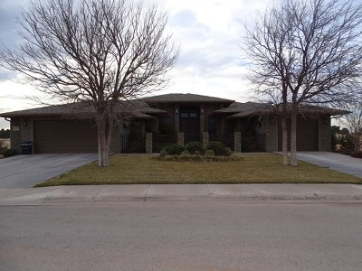 Odessa Single Family Home For Sale: 2905 San Saba Court