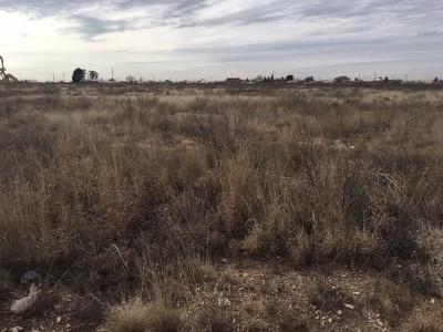Odessa Residential Lots & Land For Sale: 16640 S 385 Us