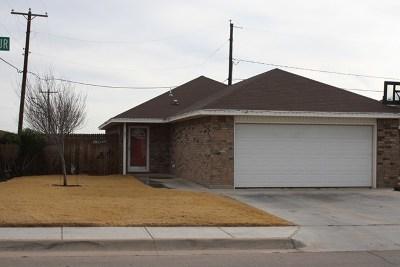 Andrews Single Family Home For Sale: 601 NE Shepherd Spur