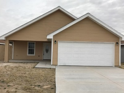 Monahans Single Family Home For Sale: 1002 N Eva Ave