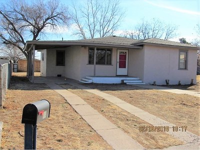 Andrews Single Family Home For Sale: 209 SW 10th St