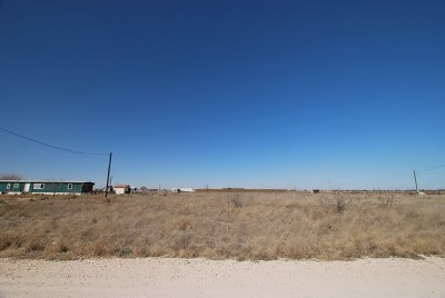 Odessa Residential Lots & Land For Sale: Tbd Betty Lou Dr