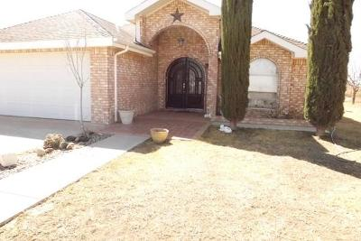 Odessa Single Family Home For Sale: 7824 S Us Hwy 385