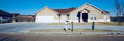 Odessa Single Family Home For Sale: 4318 N Redland