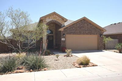 Odessa Single Family Home For Sale: 7216 Raphael St