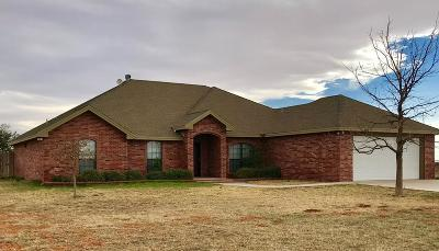 Midland Single Family Home For Sale: 3605 W County Rd 145