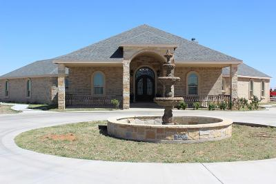 Odessa TX Single Family Home For Sale: $700,000