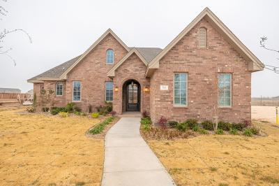 Odessa Single Family Home For Sale: 7011 Turnberry Lane