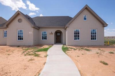 Odessa Single Family Home For Sale: 2709 Tom Morris