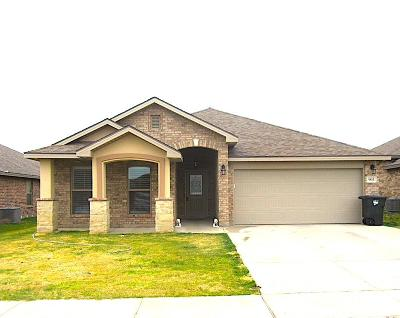 Odessa Single Family Home For Sale: 903 E 92nd St