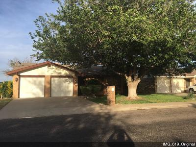 Odessa Single Family Home For Sale: 8826 Holiday Dr