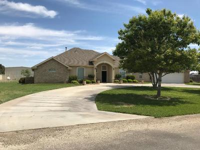 Odessa Single Family Home For Sale: 7011 Willow Bend