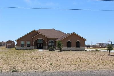 Odessa Single Family Home For Sale: 1700 Trail Dr