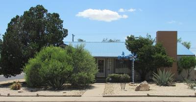 Odessa Single Family Home For Sale: 401 Elm Dr