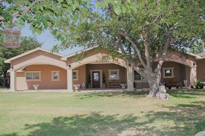 Odessa Single Family Home For Sale: 3029 N Ambassador