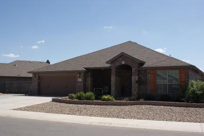 Midland Single Family Home For Sale: 407 Mile High Ln