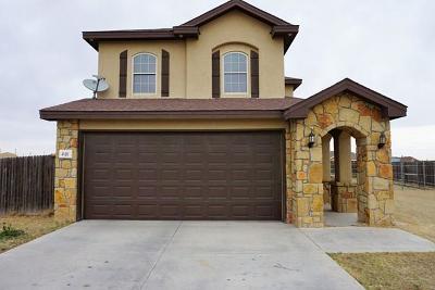 Odessa Single Family Home For Sale: 40 Desert Willow Circle