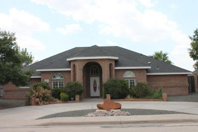 Odessa Single Family Home For Sale: 4 E San Marcos Court