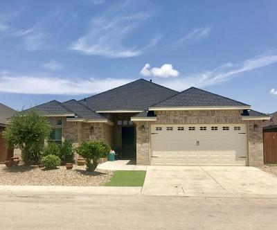 Odessa Single Family Home For Sale: 7217 Donatello St